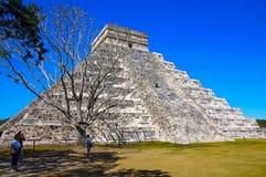 Pirámide de Kukulcan detrás del árbol seco foto de archivo
