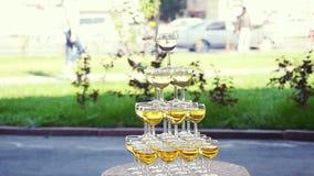 Pirámide de los vidrios de champán en el banquete de boda en a cámara lenta 1920x1080 metrajes