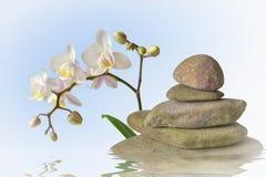 Pirámide de piedra con la orquídea Imagenes de archivo