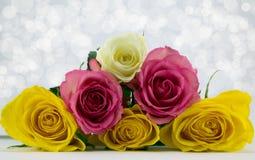 Pirámide de rosas. Fotos de archivo