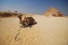 Pirámide del paso de progresión de Djoser Imagenes de archivo
