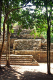 Pirámide maya, Coba, México Fotos de archivo