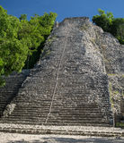 Pirámide maya de Coba Imagen de archivo libre de regalías