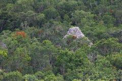 Pirámide maya de Coba Imagen de archivo