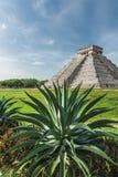 Pirâmide de Kukulcan Fotografia de Stock