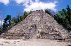 Pirâmide de Nohoch Mul Foto de Stock