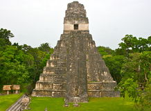 Pirâmide de Tikal em Guatemala Imagem de Stock