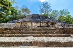 Pirâmide em Calakmul, México fotografia de stock