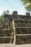 Pirâmide maia, Coba, México Foto de Stock Royalty Free