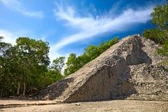 Pirâmide maia de Nohoch Mul em Coba Foto de Stock