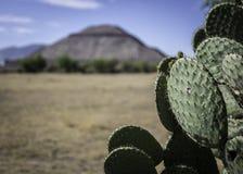 Pirâmide Teotihuacan da lua Fotos de Stock Royalty Free