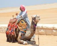 Pirâmides de Gizeh Giza Fotografia de Stock Royalty Free