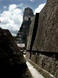 Pirâmides maias em Tikal Fotos de Stock