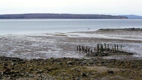 Pir återstår på Stockton vårar som Maine med bryner ön i avståndet stock video