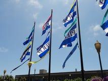 pir för 39 flaggor Arkivbild