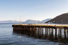Pir fodrade med gummihjul som stänkskärmar för fartygen, havet och bergen i bakgrund, Harstad i Norge Arkivbild