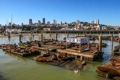 Pir 39 i San Francisco, USA Arkivbilder