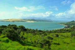 Pir på Omapere, Nya Zeeland Royaltyfria Bilder