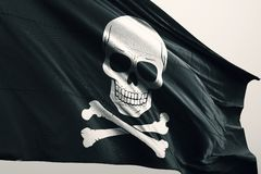 Pirate icon on flag vector illustration