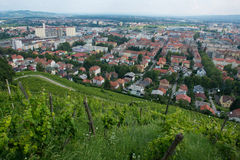 Piramida Hill in Maribor Stock Image