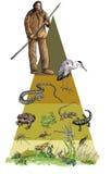 Piramide, anfibi e reptils ecologici illustrazione di stock