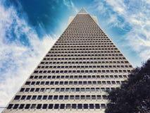 Piramide di TransAmerica che raggiunge nel cielo Fotografie Stock Libere da Diritti