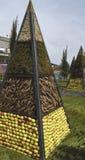 Piramide ecologica Fotografia Stock Libera da Diritti