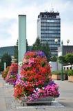 Piramide luminosa del fiore come decorazione della via, alta costruzione amministrativa nel fondo Fotografia Stock