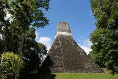 Piramide Mayan antica Fotografia Stock Libera da Diritti