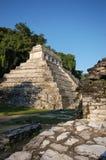 Rovina-monumenti maya il Chiapas Messico di Palenque Immagine Stock