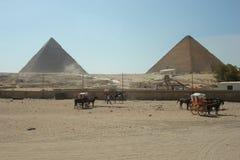 Piramide van Giza stock foto's