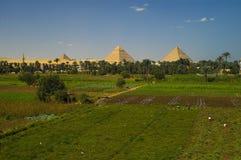 Piramides van Egypte Royalty-vrije Stock Fotografie