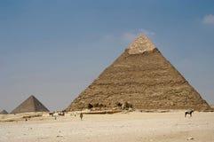 Piramidi di Giza Fotografie Stock