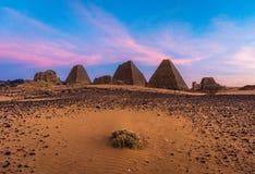 Piramidi di Meroe, Sudan in Africa fotografia stock libera da diritti