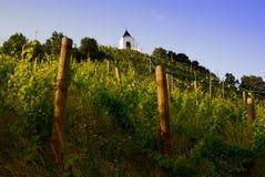 Piramidy wzgórze, Maribor, Slovenia Fotografia Royalty Free