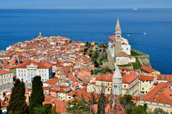 Piran. Historical city of Piran, Slovenia Stock Photos