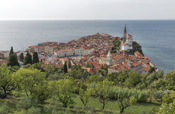 Piran Old Town cityscape, Slovenia. Aerial view. Stock Images