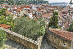Piran Old Town cityscape, Slovenia. Stock Photo