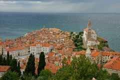 Piran, panoramic view. And Adriatic Sea Royalty Free Stock Photography