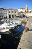 Piran's boats Stock Image