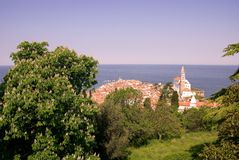 Piran, Slovenia. Withe the saint George cathedral seen from the old city walls at the hill Stock Photography