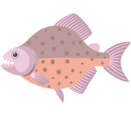 piranha stock illustratie