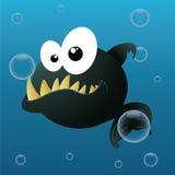 Piranha Royalty Free Stock Photography