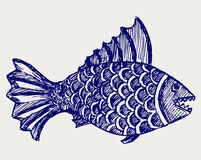 Piranha fish. Doodle style. Sketch vector Stock Images