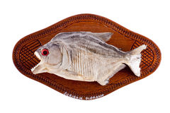 Piranha fish as trophy on wood isolated Royalty Free Stock Photo