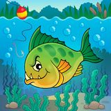 Piranha fish underwater theme 1 Stock Images