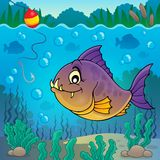 Piranha fish underwater theme 3 Royalty Free Stock Images