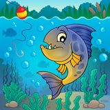 Piranha fish underwater theme 2 Royalty Free Stock Photo