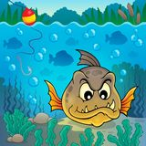 Piranha fish underwater theme 4 Stock Images