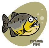Piranha fish Stock Photo